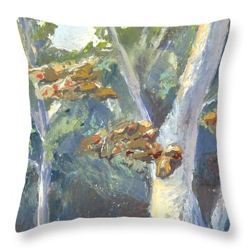 Sunlight And Sycamores Throw Pillow