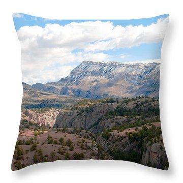 Sunlight Creek Of Wy Throw Pillow