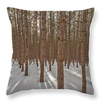 Sunlight Filtering Through A Pine Forest Throw Pillow