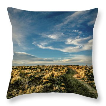Throw Pillow featuring the photograph Sunlight For Photographers by Marilyn Hunt