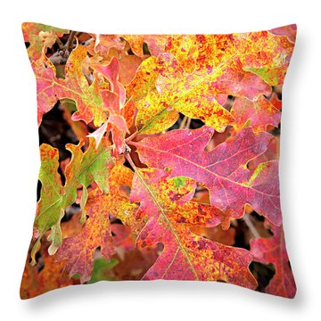 Throw Pillow featuring the photograph Sunlight Leaves by David Millenheft
