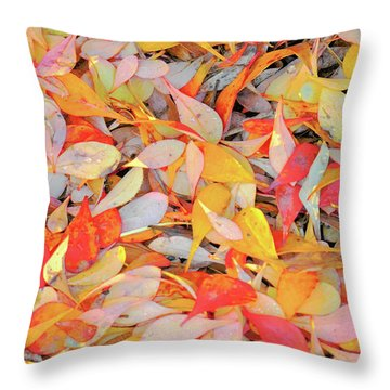 Sunlight On Barberry Leaves Throw Pillow by Michele Penner