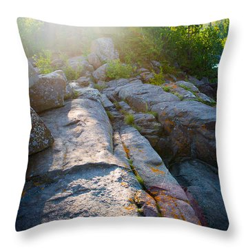 Sunlight On Cove Point Throw Pillow