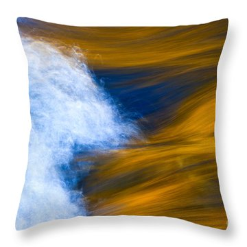 Sunlight On Flowing River Throw Pillow by Bill Brennan - Printscapes