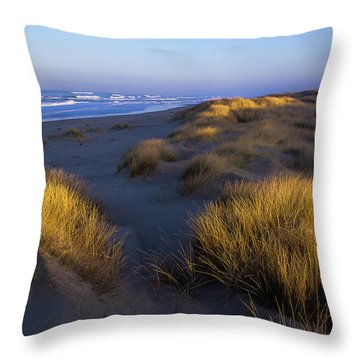 Sunlight On The Beach Grass Throw Pillow