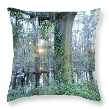 Throw Pillow featuring the photograph Sunlight On The Edisto River by Kay Gilley