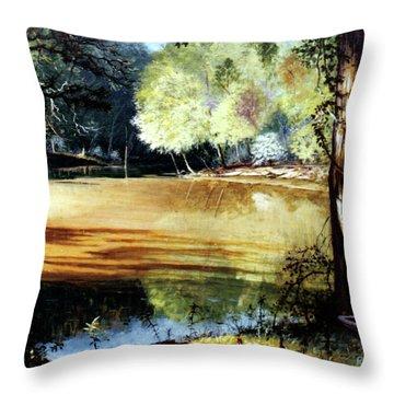 Sunlight On Village Creek Throw Pillow
