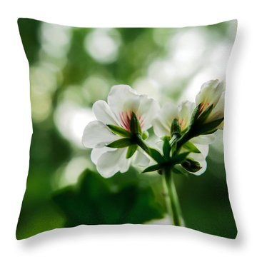 Sunlight Rain Throw Pillow by Cesare Bargiggia