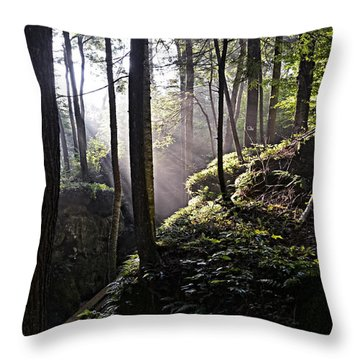 Sunlight Through Trees At Beartown State Park 3129c Throw Pillow