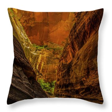 Sunlit Colors In The Slot Throw Pillow