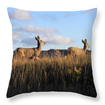 Sunlit Deer  Throw Pillow