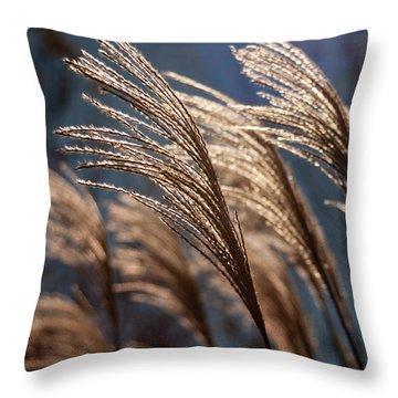 Sunlit Grass Throw Pillow