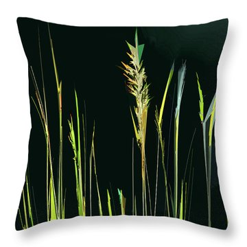 Throw Pillow featuring the digital art Sunlit Grasses by Gina Harrison
