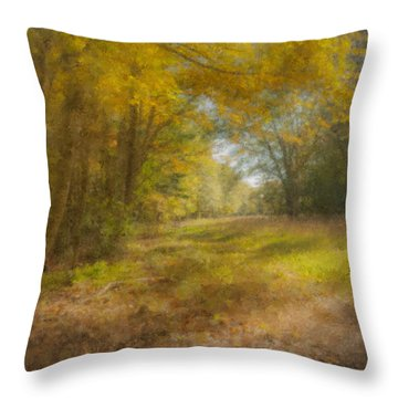 Sunlit Meadow In Borderland Throw Pillow