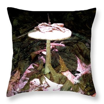Sunlit Mushroom Throw Pillow
