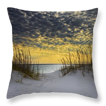 Sunlit Passage Throw Pillow by Janet Fikar
