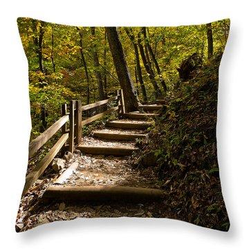 Crabtree Falls Throw Pillows