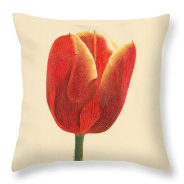 Sunlit Tulip Throw Pillow