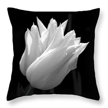 Sunlit White Tulips Throw Pillow by Rona Black