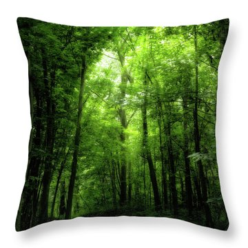 Throw Pillow featuring the photograph Sunlit Woodland Path by Lars Lentz