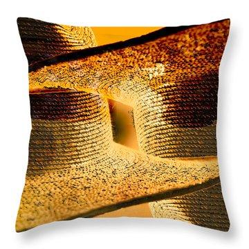 Sunlit Yellow Throw Pillow by Don Gradner