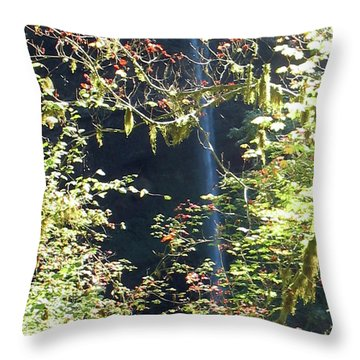 Throw Pillow featuring the photograph Sunlite Silver Falls by Thomas J Herring