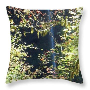 Sunlite Silver Falls Throw Pillow