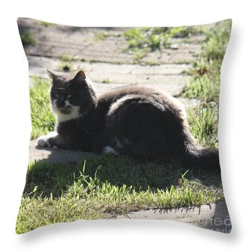 Sunning Ms. Mustache Throw Pillow