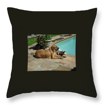 Sunning Throw Pillow by Val Oconnor