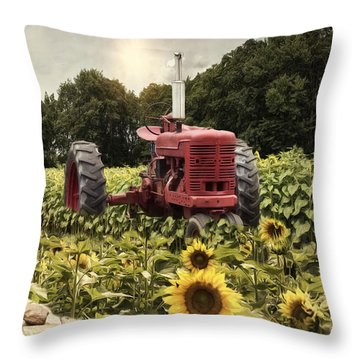 Throw Pillow featuring the photograph Sunny Acres by Robin-Lee Vieira