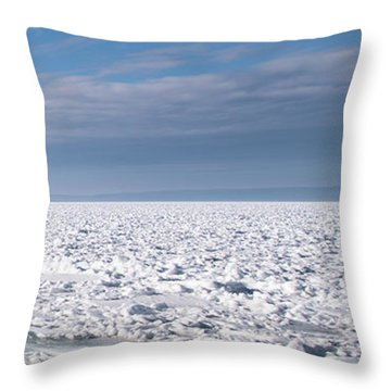 Throw Pillow featuring the photograph Sunny Afternoon-t3 by Onyonet  Photo Studios