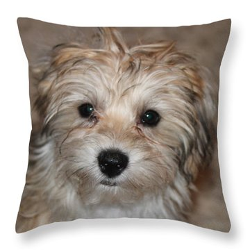 Sunny Boy Throw Pillow