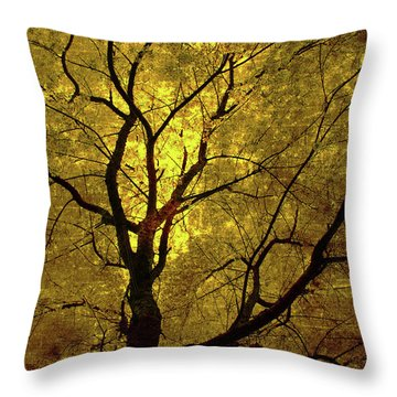 Throw Pillow featuring the painting Sunny Branches by Gray  Artus