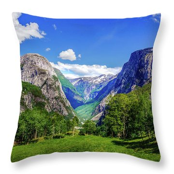 Throw Pillow featuring the photograph Sunny Day In Naroydalen Valley by Dmytro Korol