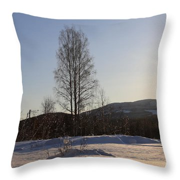 Sunny Day In Norway.  Throw Pillow