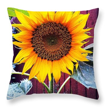 Sunny Day Throw Pillow by MaryLee Parker