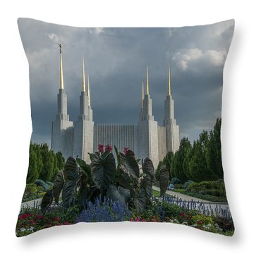 Sunny Day With Clouds Throw Pillow
