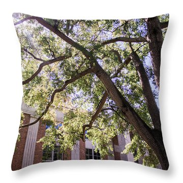Throw Pillow featuring the photograph Sunny Days At Uga by Parker Cunningham