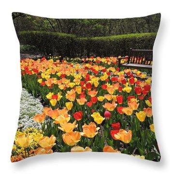 Sunny Days Throw Pillow by Teresa Schomig