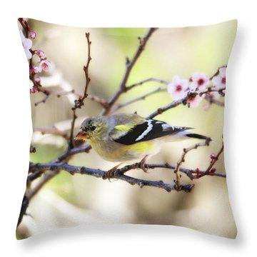 Sunny Days Throw Pillow by Trina Ansel