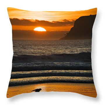Sunny Delight Throw Pillow