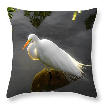 Sunny Egret Throw Pillow by Josy Cue