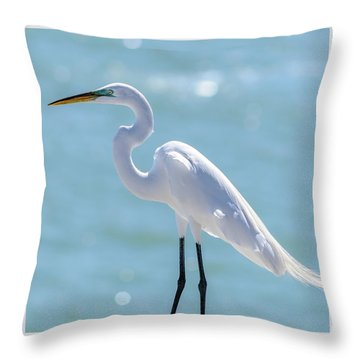 Throw Pillow featuring the photograph Sunny Egret by Steven Sparks