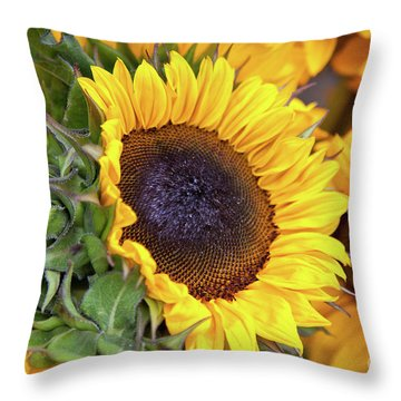 Sunny Face Throw Pillow by Susan Cole Kelly