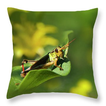 Green Grasshopper Throw Pillow by Christina Rollo