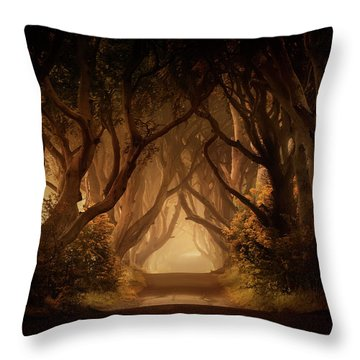 Sunny Morning In Dark Hedges Throw Pillow