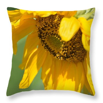 Sunny One Throw Pillow by Teresa Tilley