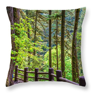 Throw Pillow featuring the photograph Sunny Path by Jerry Cahill