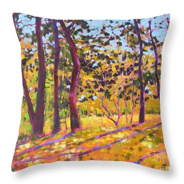 Sunny Place Throw Pillow