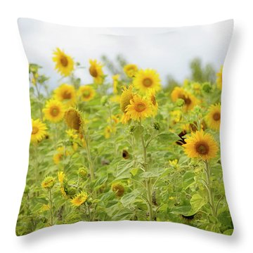 Throw Pillow featuring the photograph Sunny Roadside by Rebecca Cozart